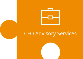 CFO Advisory Services